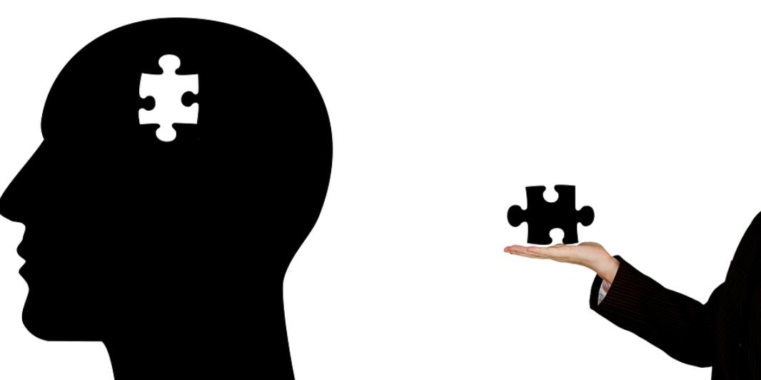 hlava a puzzle
