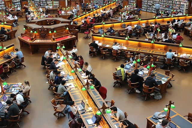 univerzitní knihovna.jpg